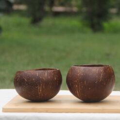 Coconut bowl for desserts