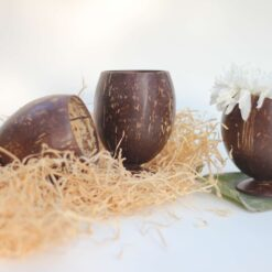 Coconut Shell Juice Cups (Set of 3)